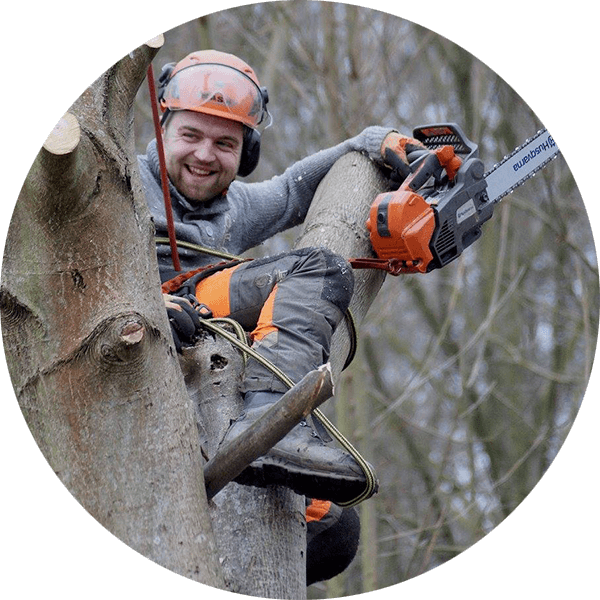 COUSIN | Landschaft - Garten - Forst | Baum- & Landschaftspflege – Baum-/Risikofällungen – Anerkannter Baumkontrolleur – Garten- & Landschaftsgestaltung – Brennholz